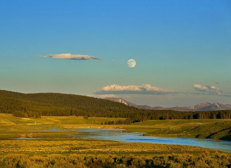 Joy Moody, Yellowstone moon, blank note cards